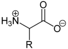 Amino acid betain structure.png