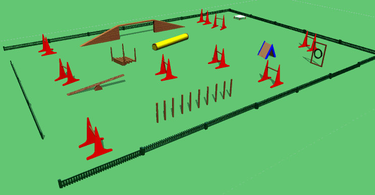 Dog Agility Course Video